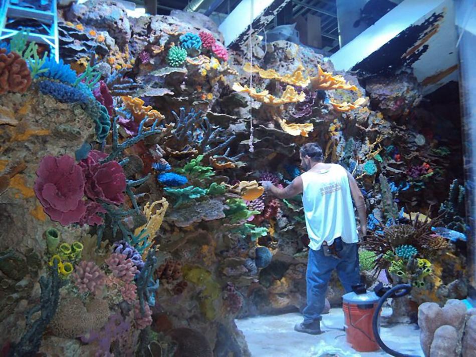 Brazilian Public Aquarium