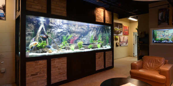 gallery_main_custom_aquariums