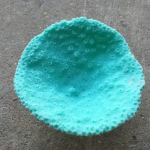 medium oval cup coral
