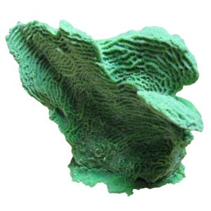 artificial coral medium lettuce coral