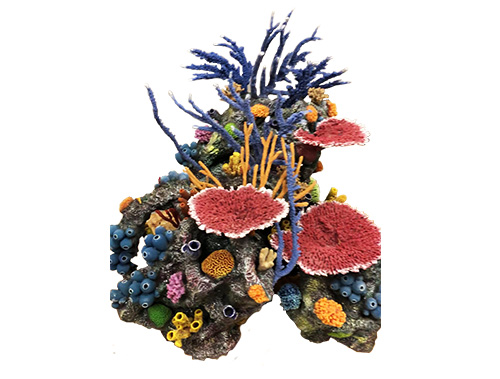 home_custom_reefs