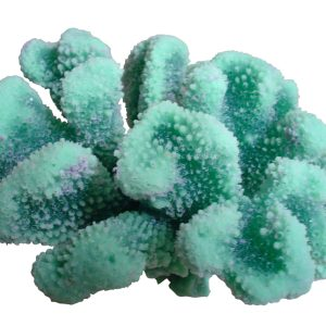 artificial corals large cauliflower acropora coral