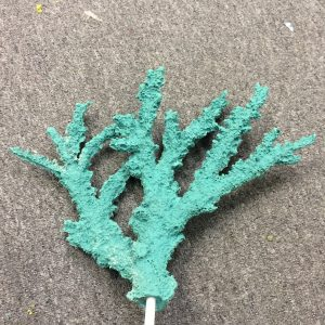 artificial coral branching staghorn acropora