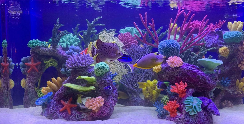Ocean Aquaria Artificial Coral Inserts